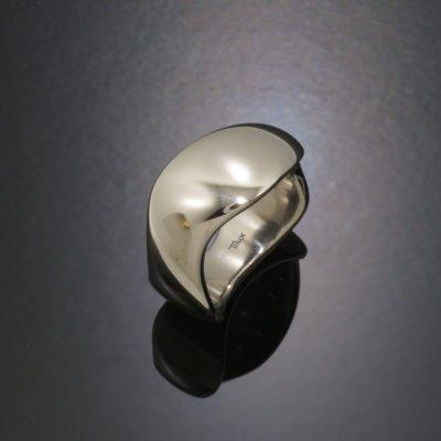 wavw_premium_blank_damering_vielsesringe_forlovelsesringe_tilux_titanium_titan_t5020